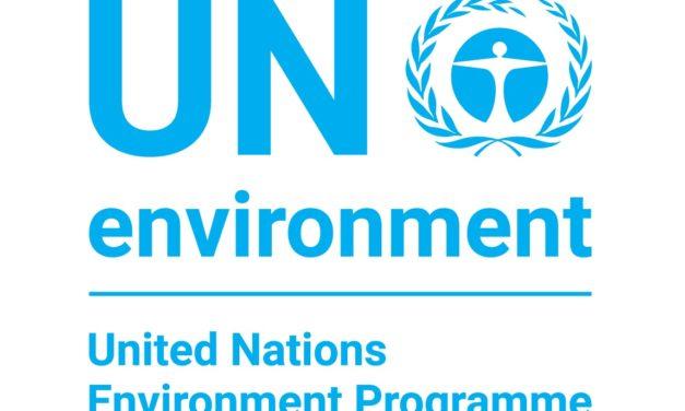 Program Środowiskowy Organizacji Narodów Zjednoczonych