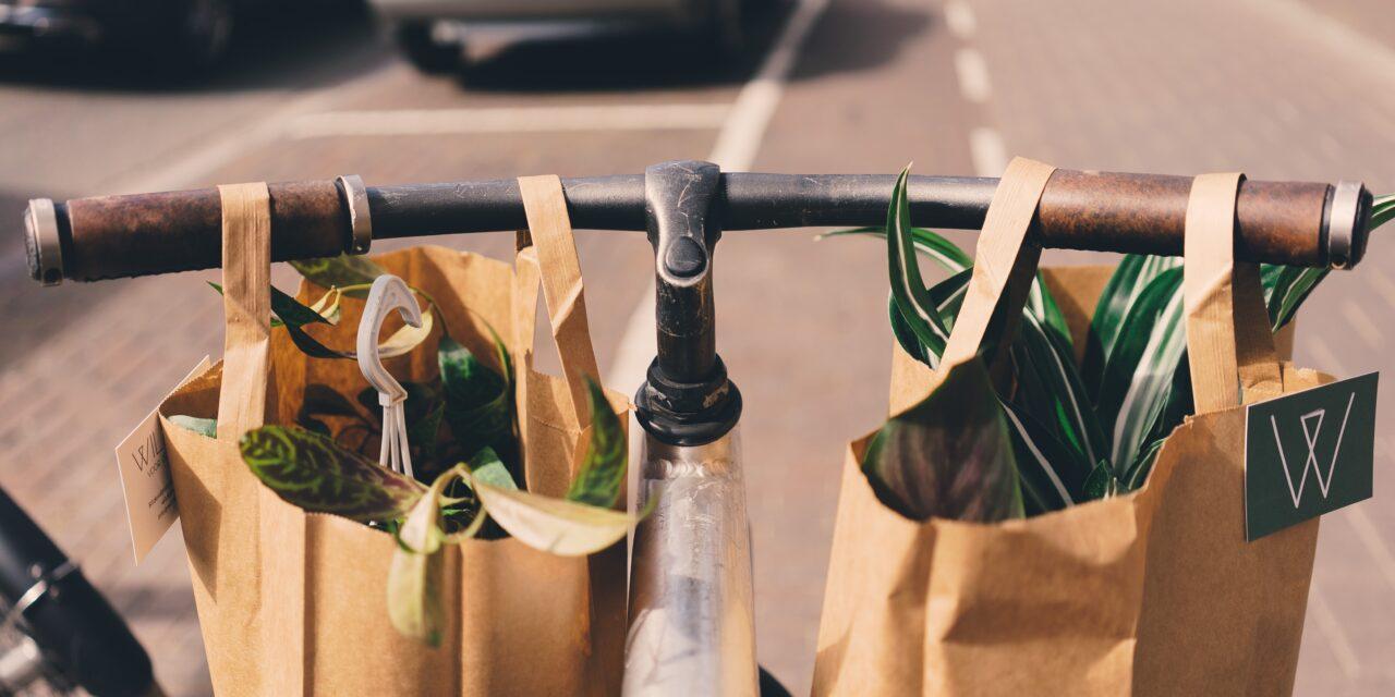 5 kroków do życia less waste. Przewodnik dla początkujących