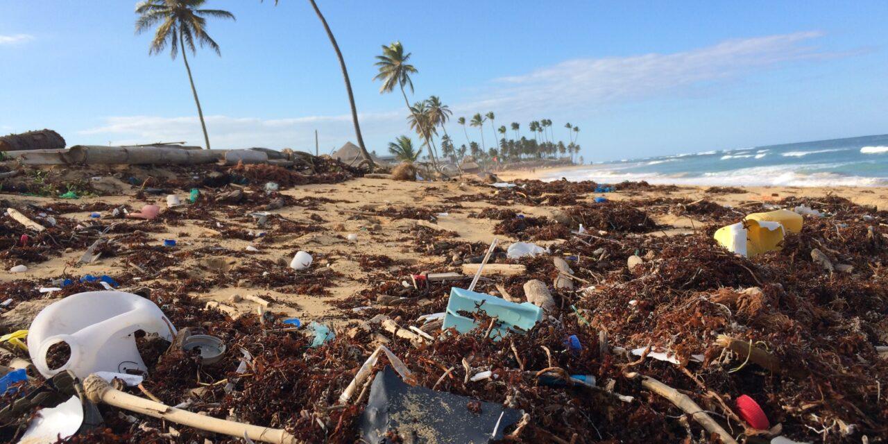 Oceany czy wysypiska śmieci?