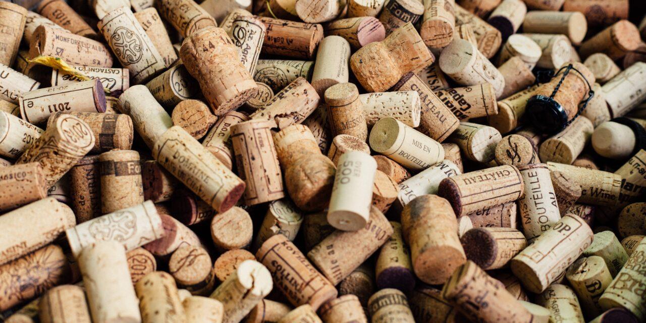 Korek – cenne drewno ekologiczne