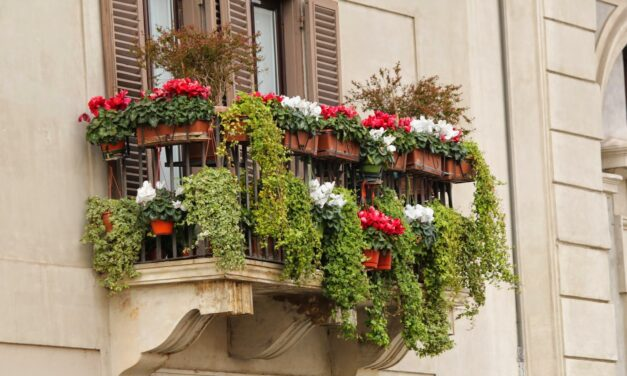 Ogród na balkonie w bloku – jak go założyć i dlaczego warto to zrobić?