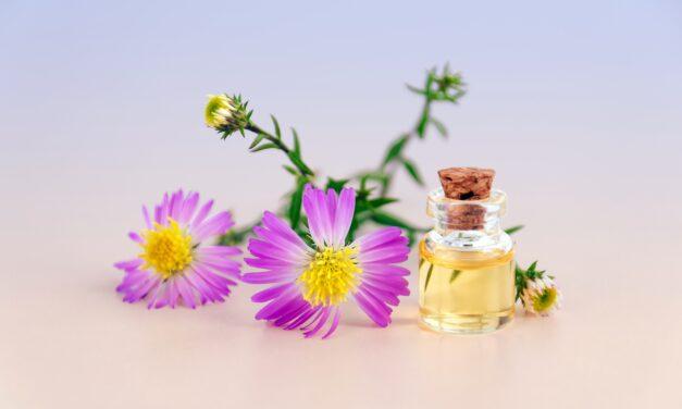 Rośliny kosmetyczne. Jakich składników warto szukać w naturalnych kosmetykach?