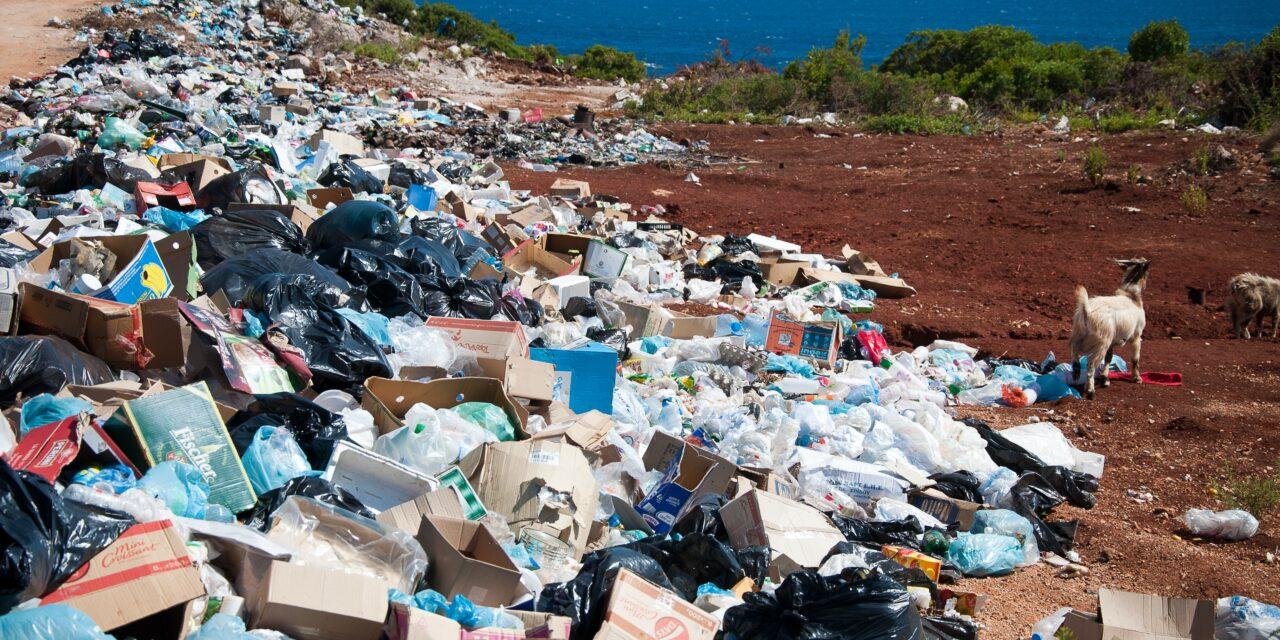 Antropocen – czy naprawdę zniszczyliśmy planetę?